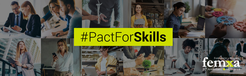 pact for skills femxa